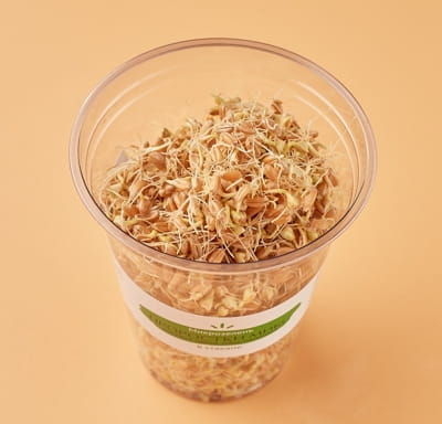 Микрозелень - Проростки микс (зелёная греча, маш, пшеница)